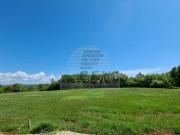 Terreno edificabile  - Cittanova (04283)