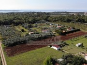 Terreno agricolo - Cittanova (03804)