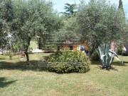 Casa istriana  - Cittanova (03406)