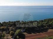 Terreno edificabile - Umago (03843)