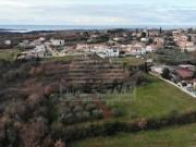 Terreno edificabile  - Cittanova (03893)